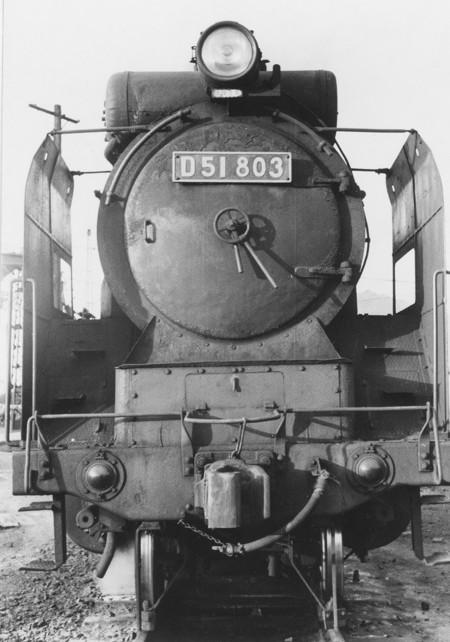 D51803